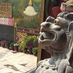 Отель Tibet International Непал, Катманду - отзывы, цены и фото номеров - забронировать отель Tibet International онлайн фото 5