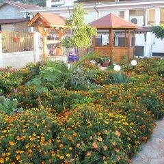 Отель Morski Dar Болгария, Кранево - отзывы, цены и фото номеров - забронировать отель Morski Dar онлайн фото 5