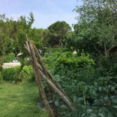 Отель Terme Vulcania Италия, Монтегротто-Терме - отзывы, цены и фото номеров - забронировать отель Terme Vulcania онлайн