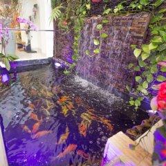 Camila Hotel фото 2