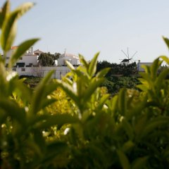 Ericeira Chill Hill Hostel & Private Rooms - Peach Garden