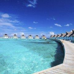 Отель Centara Grand Island Resort & Spa Maldives All Inclusive бассейн фото 3