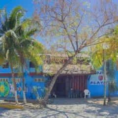 Отель Hostel Playa by The Spot Мексика, Плая-дель-Кармен - отзывы, цены и фото номеров - забронировать отель Hostel Playa by The Spot онлайн пляж