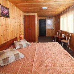Гостиница Даурия в Листвянке - забронировать гостиницу Даурия, цены и фото номеров Листвянка удобства в номере фото 2