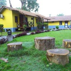 Отель Safari Adventure Lodge Непал, Саураха - отзывы, цены и фото номеров - забронировать отель Safari Adventure Lodge онлайн фото 7