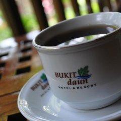 Bukit Daun Hotel and Resort фото 11