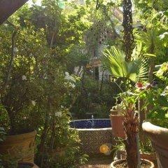 Отель Casa de las Flores Мексика, Тлакуепакуе - отзывы, цены и фото номеров - забронировать отель Casa de las Flores онлайн бассейн