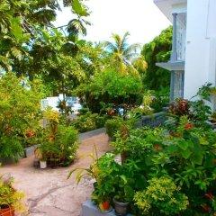 Отель Palm View Guesthouse And Conference Centre Монтего-Бей фото 6