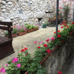 Отель Toni's Guest House Болгария, Сандански - отзывы, цены и фото номеров - забронировать отель Toni's Guest House онлайн фото 35