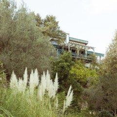 Отель Olive Farm Of Datca Guesthouse - Adults Only Датча приотельная территория