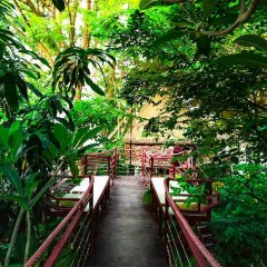 Отель Dao Anh Khanh Treehouse Ханой фото 4