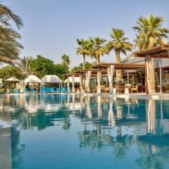 Отель Desert Palm ОАЭ, Дубай - отзывы, цены и фото номеров - забронировать отель Desert Palm онлайн детские мероприятия фото 2