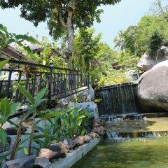 Отель Greenery Resort Koh Tao бассейн фото 2