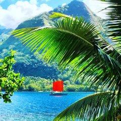 Отель Robinson's Cove Villas - Deluxe Wallis Villa Французская Полинезия, Муреа - отзывы, цены и фото номеров - забронировать отель Robinson's Cove Villas - Deluxe Wallis Villa онлайн бассейн