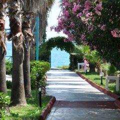 Meridia Beach Hotel Турция, Окурджалар - отзывы, цены и фото номеров - забронировать отель Meridia Beach Hotel онлайн приотельная территория