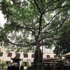 Отель Saigon Morin Вьетнам, Хюэ - отзывы, цены и фото номеров - забронировать отель Saigon Morin онлайн фото 2