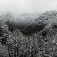 Отель Demircioglu Ortan Köyü Konagi