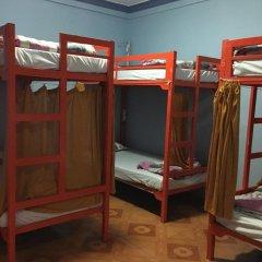 Отель Tiny Tigers Далат детские мероприятия фото 2