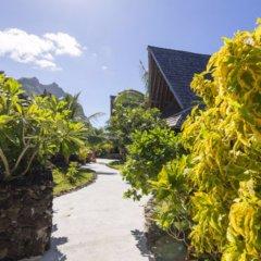 Отель Oa Oa Lodge Французская Полинезия, Бора-Бора - отзывы, цены и фото номеров - забронировать отель Oa Oa Lodge онлайн фото 2