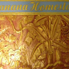Banana Homestay And Hostel Хойан интерьер отеля