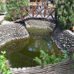 Гостиница Kolyba Opryshkiv Хуст бассейн