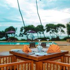 Отель Vendol Resort Шри-Ланка, Ваддува - отзывы, цены и фото номеров - забронировать отель Vendol Resort онлайн гостиничный бар