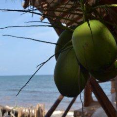 Отель Posada del Sol Tulum пляж фото 2