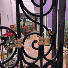 Отель Olga Querida B&B Hostal Мексика, Гвадалахара - отзывы, цены и фото номеров - забронировать отель Olga Querida B&B Hostal онлайн спортивное сооружение
