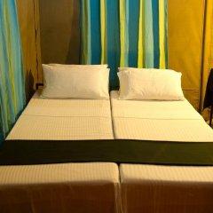 Отель Big Game Camp Yala Шри-Ланка, Катарагама - отзывы, цены и фото номеров - забронировать отель Big Game Camp Yala онлайн комната для гостей фото 5