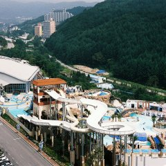 Отель Phoenix Pyeongchang Hotel Южная Корея, Пхёнчан - отзывы, цены и фото номеров - забронировать отель Phoenix Pyeongchang Hotel онлайн с домашними животными