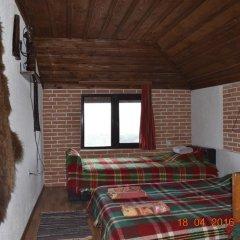 Отель Guest House Alexandrova Болгария, Ардино - отзывы, цены и фото номеров - забронировать отель Guest House Alexandrova онлайн комната для гостей фото 2