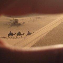Отель Auberge Ocean des Dunes Марокко, Мерзуга - отзывы, цены и фото номеров - забронировать отель Auberge Ocean des Dunes онлайн фото 17