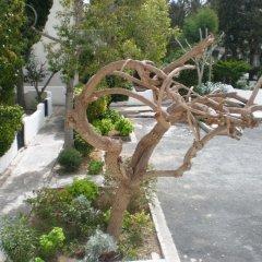 Отель Paphos Gardens Holiday Resort фото 2