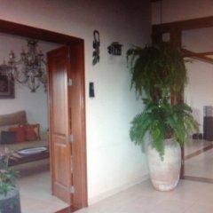 Отель Finca La Gavia Испания, Лас-Плайитас - отзывы, цены и фото номеров - забронировать отель Finca La Gavia онлайн фото 12