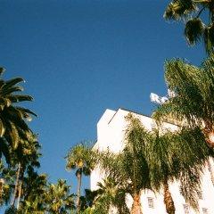 Отель Hollywood Roosevelt Hotel США, Лос-Анджелес - 1 отзыв об отеле, цены и фото номеров - забронировать отель Hollywood Roosevelt Hotel онлайн пляж