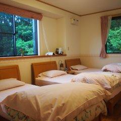 Отель Yakushima Pension Ichigoichie Япония, Якусима - отзывы, цены и фото номеров - забронировать отель Yakushima Pension Ichigoichie онлайн комната для гостей фото 4