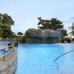 Отель Marco Polo Plaza Cebu Филиппины, Лапу-Лапу - отзывы, цены и фото номеров - забронировать отель Marco Polo Plaza Cebu онлайн с домашними животными
