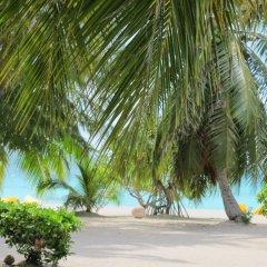 Отель Pension Hotu пляж фото 2