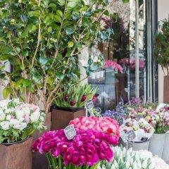 Отель Bois de Boulogne Retreat Франция, Париж - отзывы, цены и фото номеров - забронировать отель Bois de Boulogne Retreat онлайн фото 4