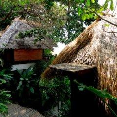Отель Thipwimarn Resort Koh Tao Таиланд, Остров Тау - отзывы, цены и фото номеров - забронировать отель Thipwimarn Resort Koh Tao онлайн фото 4