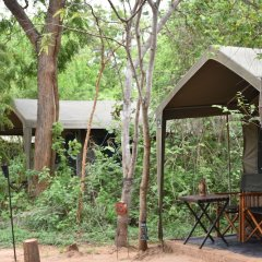 Отель Big Game Camp Yala Шри-Ланка, Катарагама - отзывы, цены и фото номеров - забронировать отель Big Game Camp Yala онлайн фото 15
