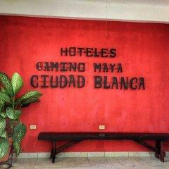 Hotel Camino Maya Ciudad Blanca фитнесс-зал