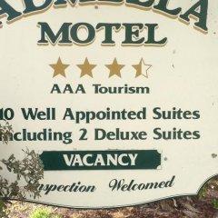 Отель Admella Motel фото 2