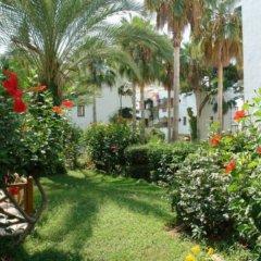 Antik Garden Hotel Турция, Аланья - отзывы, цены и фото номеров - забронировать отель Antik Garden Hotel онлайн фото 5