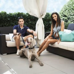 Отель Suite Litoraneo Римини с домашними животными