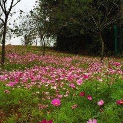 Отель Fogang Hemingzhou Sakura Hot Spring Resort фото 2