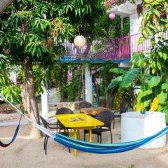 Отель Posada Señor Mañana Мексика, Сан-Хосе-дель-Кабо - отзывы, цены и фото номеров - забронировать отель Posada Señor Mañana онлайн бассейн фото 2