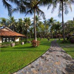 Отель Seahorse Resort & Spa Фантхьет фото 7