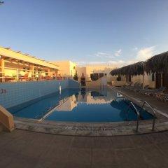Отель Red Sea Dive Center бассейн фото 2