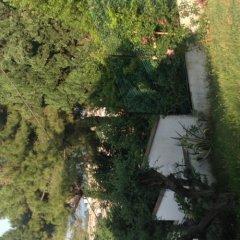 Отель B&B Villa Aersa Италия, Монтезильвано - отзывы, цены и фото номеров - забронировать отель B&B Villa Aersa онлайн приотельная территория